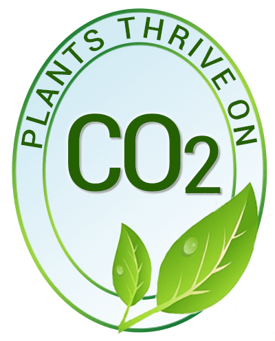 Plants Thrive on CO2